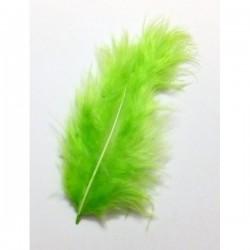 Pluma marabú 9/12 cm verde