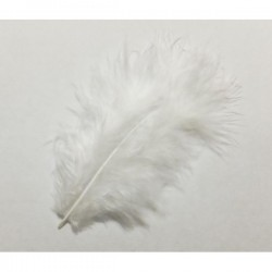 Pluma marabú 9/16 cm blanca